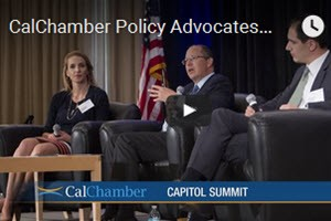 CalChamber Policy Advocates Spotlight Hot Issues at Capitol Summit​