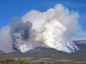 Cal/OSHA Issues Notice for Worker Health and Safety in Wildfire Regions