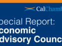 Economic Advisory Council: Data Showing Balanced Growth Contrasts with Public Pessimism on State of Economy