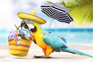Keep Your Workplace Running Smoothly During Summer Vacations