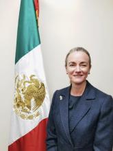 Hon. Liliana Ferrer Silva