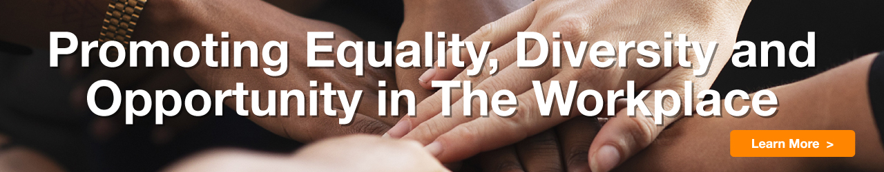 >Promoting Equality, Diversity and Opportunity in the Workplace