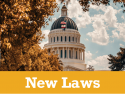 New Employment Laws in Effect Now; Others Coming on January 1, 2021