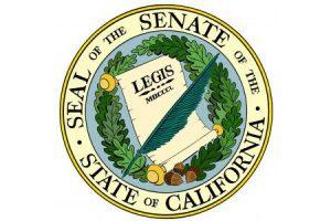 Incoming Senate Features 8 New Members