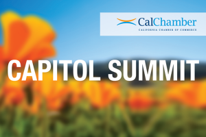 2021 CalChamber Capitol Summit - Roundtable Discussion