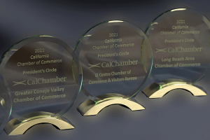 14 Local Chambers Receive 2021 President's Circle Award