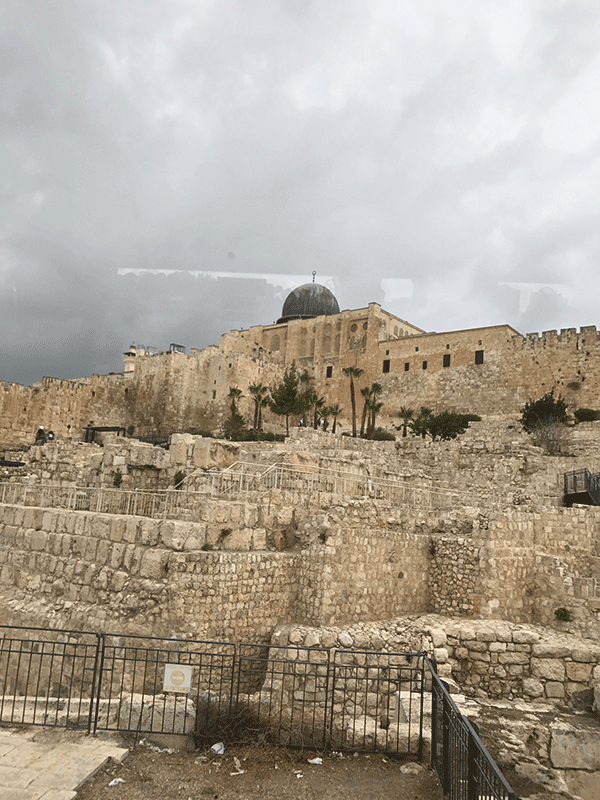 2017 Israel Trip Blog Day 3 Advocacy California